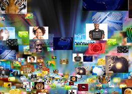 Website Icon for Presentation