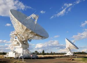 tv channel distribution services